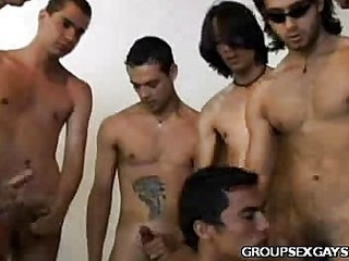 Latino Gay Pain in the neck Orgy